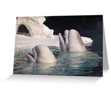 Beluga Angels: Greeting Card