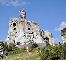 Mirow Castle - Poland by MarekM