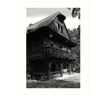 Old wooden house Art Print