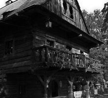 Old wooden house by Karel Kuran