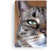 Green Eye. Canvas Print