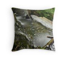 Water Movement, Hornsbeck Creek Throw Pillow