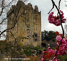 Ireland - Blarney Blossom by jezebel521