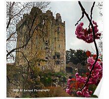Ireland - Blarney Blossom Poster