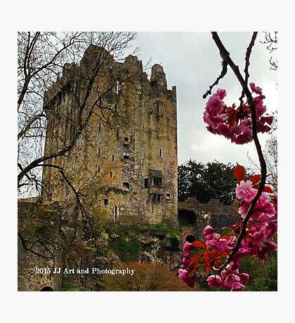 Ireland - Blarney Blossom Photographic Print