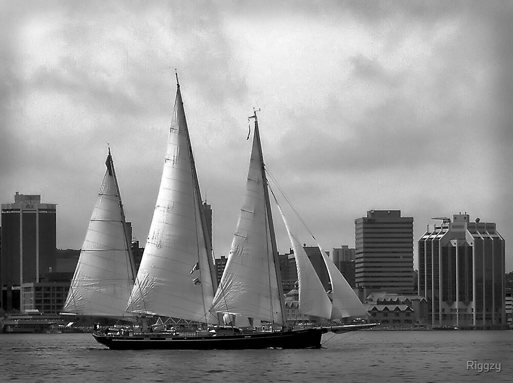 Starboard by ShutterUp Photographics