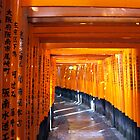 More Torii Gates by Greenhorn