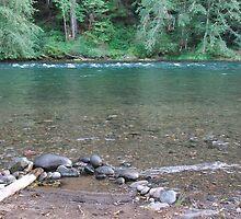 Willamette River, Oregon by Tamara Lindsey