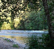 Willamette River at Eagle Rock, Oregon by Tamara Lindsey