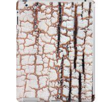Crackling iPad Case/Skin