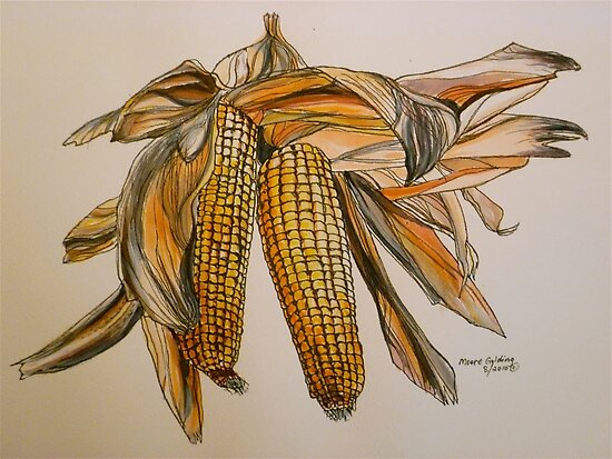 Drying sweetcorn, Tuscany. Pen and wash. Framed. 42x32cm by Elizabeth Moore Golding