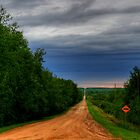 The Long Lonely Road by Larry Trupp