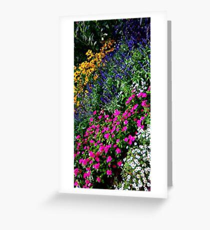 Rainbow of flowers Greeting Card