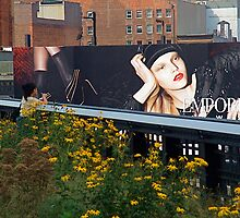 Viewed from the High Line, NYC by RonnieGinnever