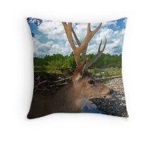 Riverside Buck Throw Pillow