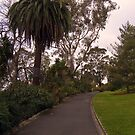 Royal Botanic Gardens by Leanne Nelson