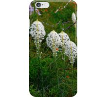 Bear Grass iPhone Case/Skin