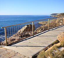 Curl Curl Headland Boardwalk IV by Kelly Robinson