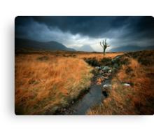 Scotland : Rannoch Moor Canvas Print