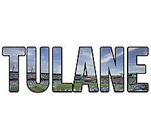 Tulane Yulman Stadium Photographic Print