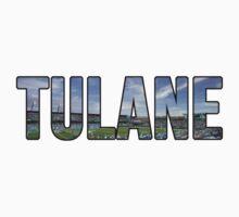 Tulane Yulman Stadium by katiefarello