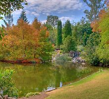 Nerima Gardens by Claire  Farley