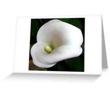 calla Greeting Card