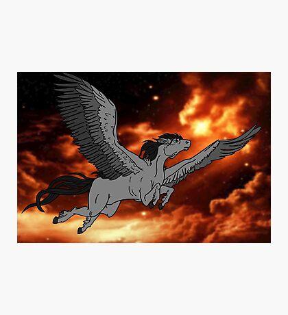 Dark Pegasus Photographic Print