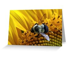 *BUMBLEBEE ON A SUNFLOWER* Greeting Card