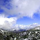 Blue Sky and Snow  by Peggy Berger