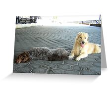 TOO HOT TO WALK!! Greeting Card