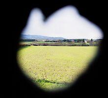 Peeking through a hole in the barn by twoboos