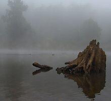 Misty River by Scott Smith