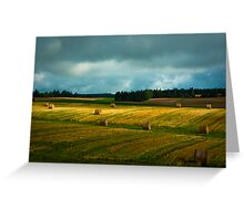P.E.I. August Field Greeting Card
