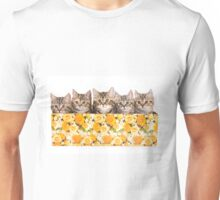 Five striped kitten in a box Unisex T-Shirt