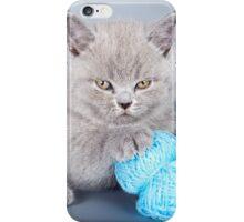 Fluffy gray kitten iPhone Case/Skin