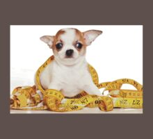 chihuahua puppy One Piece - Short Sleeve