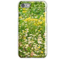 Chamomile and Dandelion iPhone Case/Skin