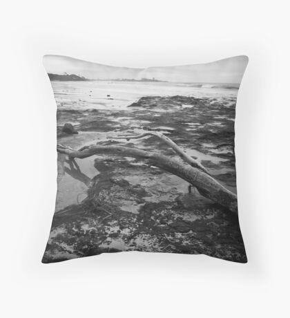 Angourie Driftwood June '09 Throw Pillow