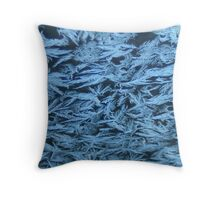 Iced Over Mornings Throw Pillow