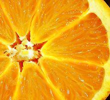 A slice of Orange by Danielle Girouard