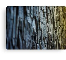 coloured vertical slate wall Canvas Print