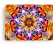 Orange Slices Canvas Print