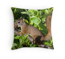Forage for Breakfast! Throw Pillow