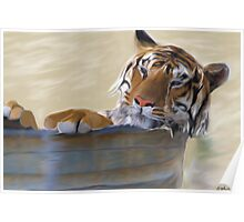 Tiger In a Tub Poster