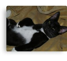 TUX A sleep all sprawled out Canvas Print