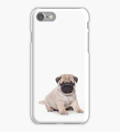 Cute puppy pug iPhone Case/Skin