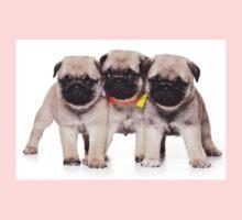 Three charming pug puppy Kids Clothes