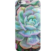 Succulents II iPhone Case/Skin