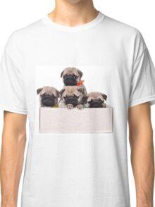 Three charming pug puppy in a box Classic T-Shirt